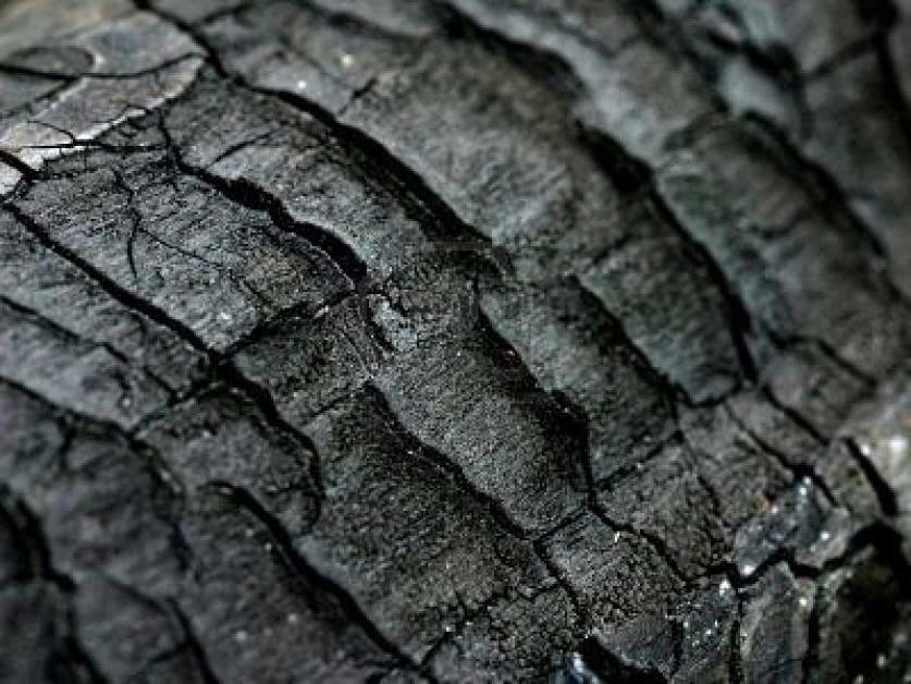 legno carbonizzato