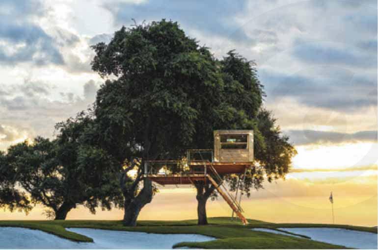 casetta in legno su albero