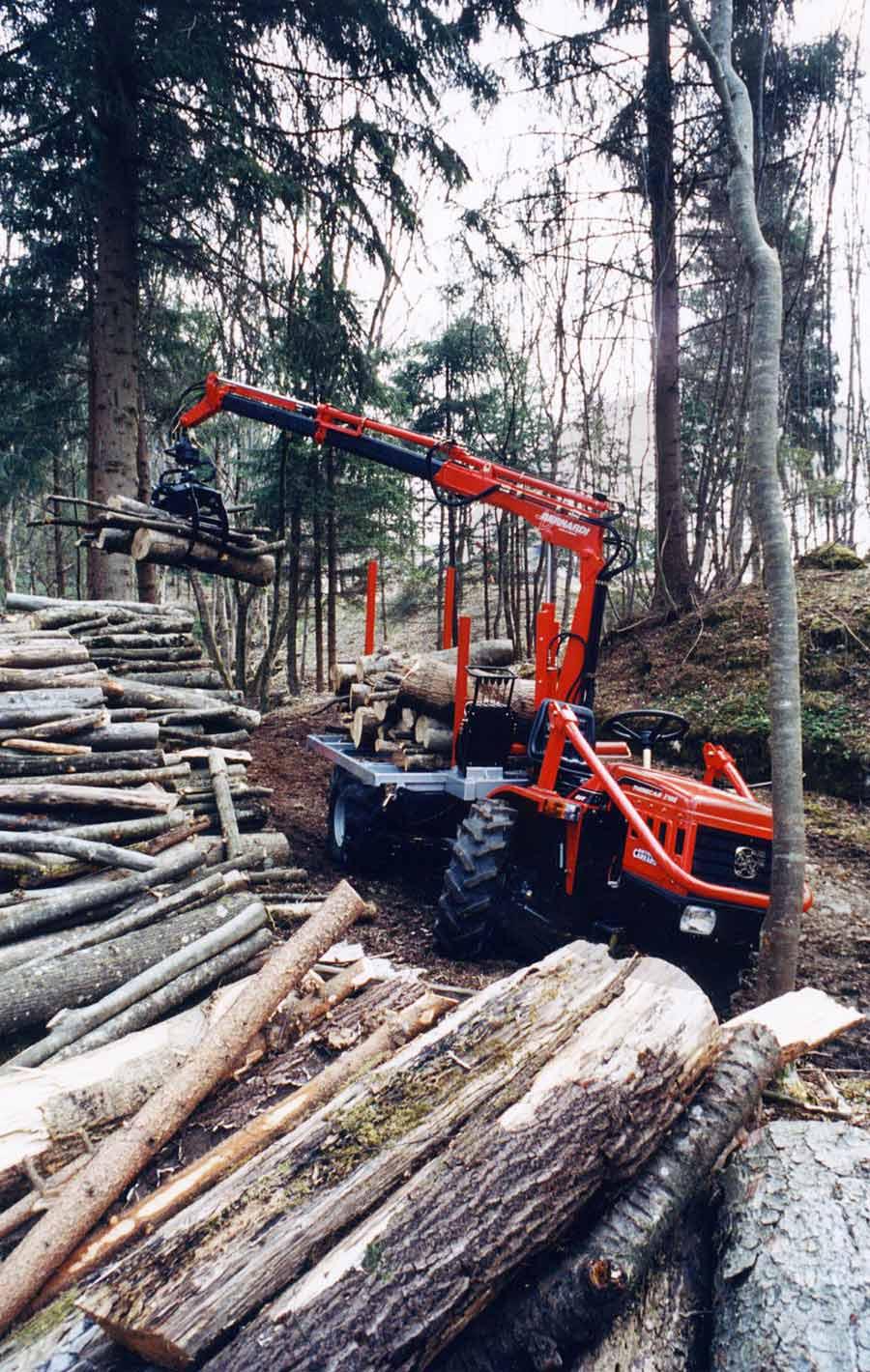 legno macchina forestale