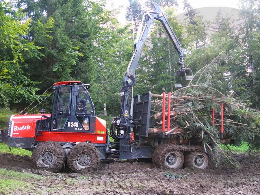 macchine forestali a lavoro