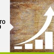 andamento mercato del legno in crescita