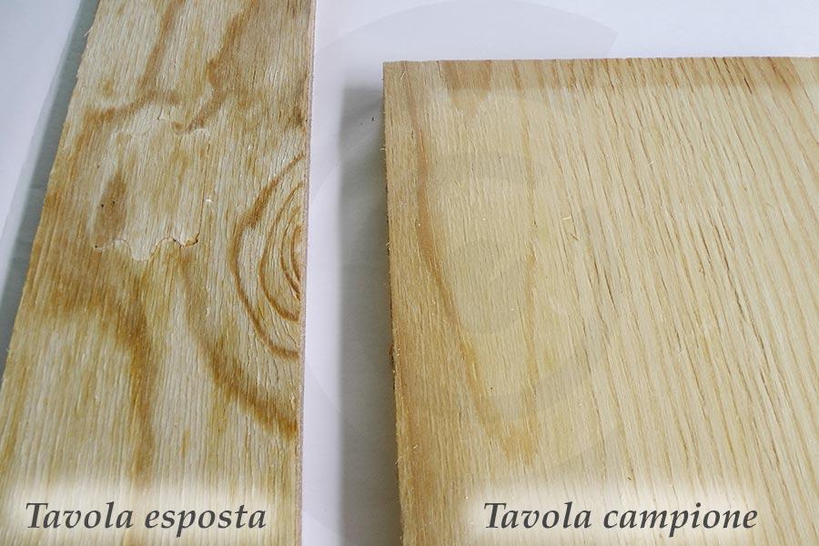 confronto tavole pino russo