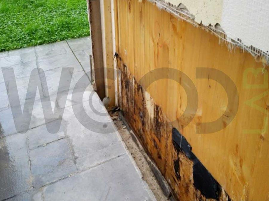 marcescenza pareti casa in legno