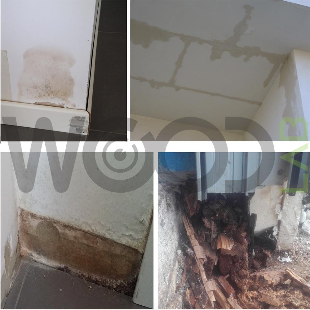 problemi vari di infiltrazione case di legno