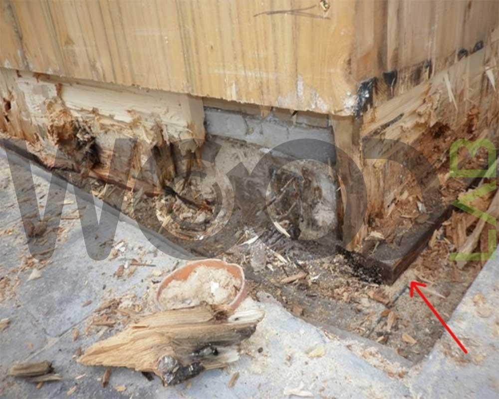 fondamenta di casa di legno marce