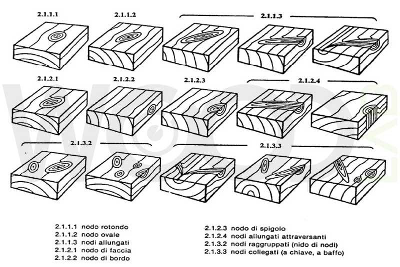 tipologie di nodi
