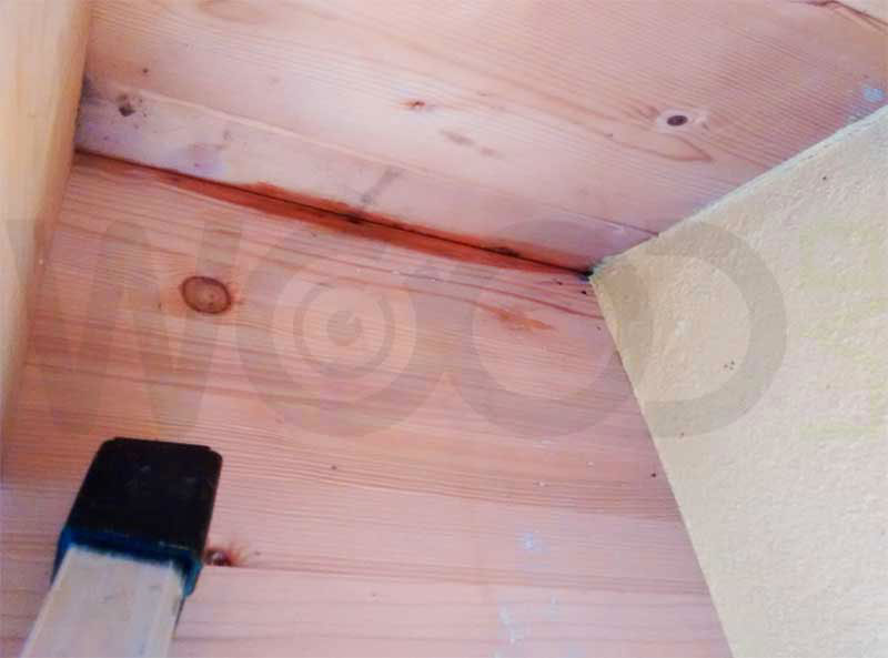 macchie di umidità abitazione in legno