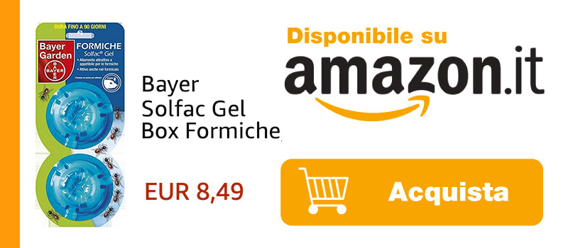 bayer gel box formiche